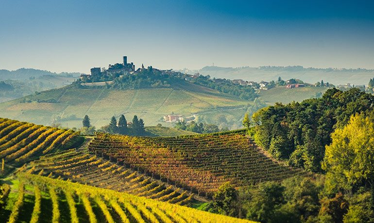 Tours of the Langhe