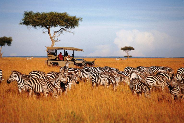 Tour Ritmo della Tanzania